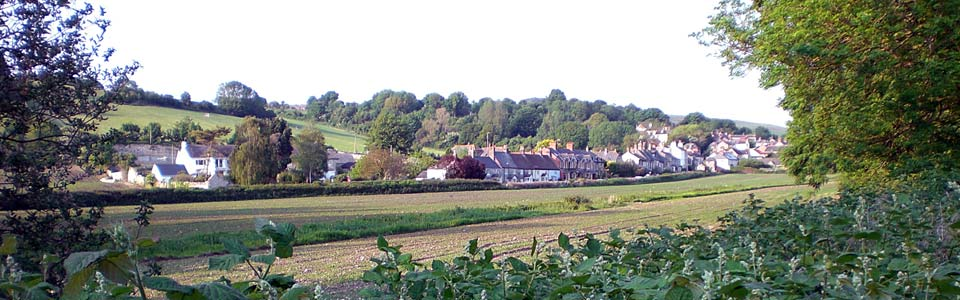viewElwell